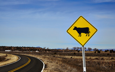 Cattle crossing road sign