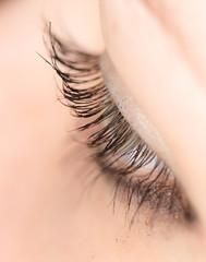 Closeup view of eye lashes