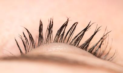 eyelash. close-up