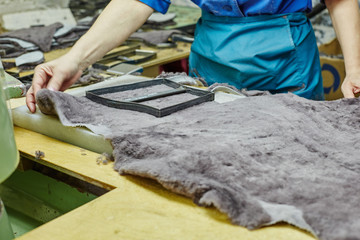 Image of worker puts templet on pelt