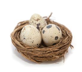 oeufs de cailles dans un nid de paille