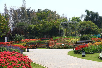 An Urban Park