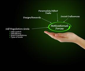 Motivational Forces