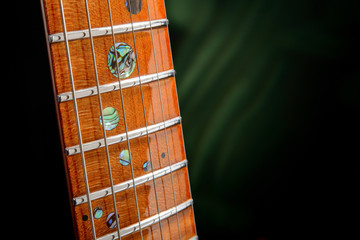 The strings on the fretboard electric guitar close