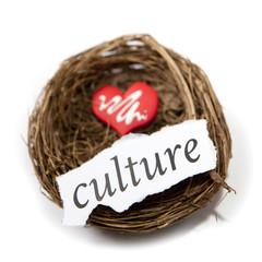 culture dans un nid d'oiseau
