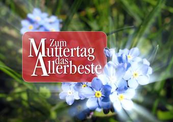 Muttertagsgrüße mit blauen Vergißmeinnicht Blüten
