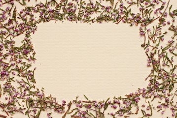 framed background paper and dried heather flowers