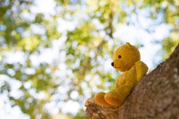 木に座る熊の縫い包み