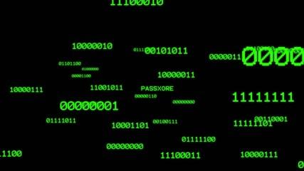 Finding password from binary matrix
