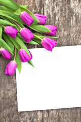 violet tulips on the oak brown table with white sheet of paper 4