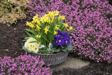 Gepflegtes Grab im Frühling
