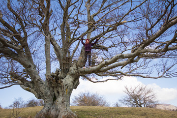 Ragazza sull'albero