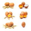 Leinwanddruck Bild - hühnereier set sammlung
