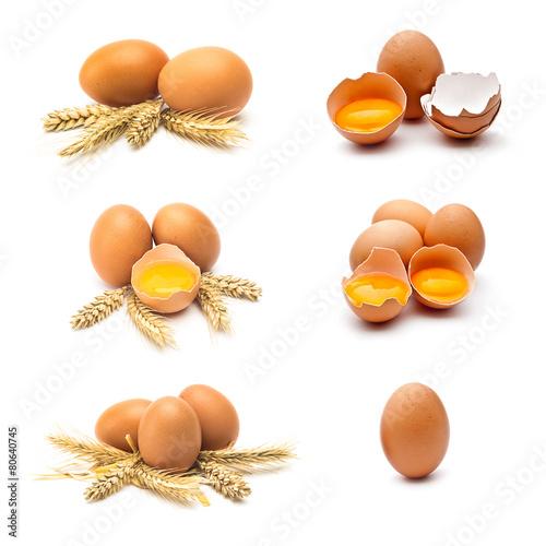 Leinwanddruck Bild hühnereier set sammlung