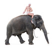 mahout rides on an elephant