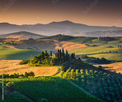 Scenic Tuscany landscape at sunrise, Val d'Orcia, Italy - 80642778