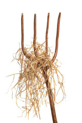 Pitchfork With Hay