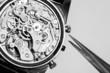 Vintage watch movement repair and tweezers - 80648508