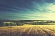 Leinwanddruck Bild - wheat field in sunset time (vintage toned style)
