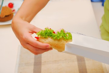 hands pack up sandwich