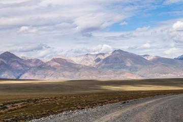 Chui steppe