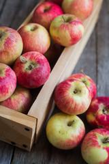 Красные яблоки в ящике