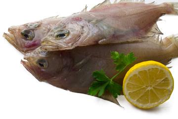Fresh fish with lemon and parsley