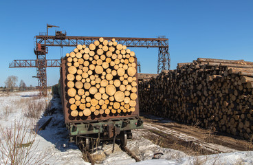 Loading and transportation of timber wagons.