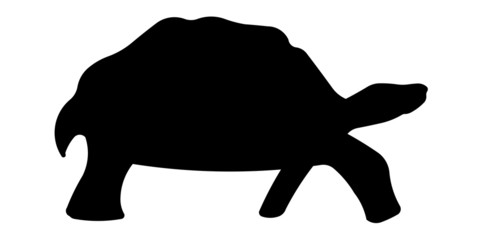 Schildkröte Silhouette