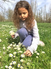 bambina che raccoglie margherite
