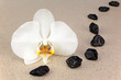 Black spa stones and white orchid flowers over nature background