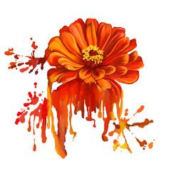 flower tsiniya vector illustration  hand drawn  painted