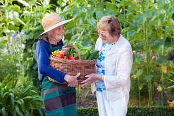 Mature Woman Helping a Senior Gardener with Basket