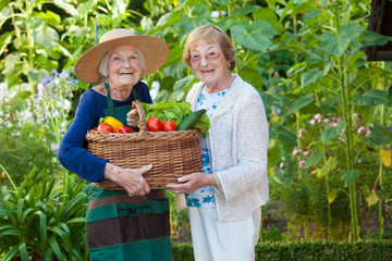 Two Elderly Holding a Basket of Veggies Together