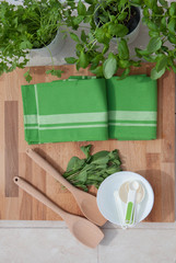 fresh herbs for food preparation