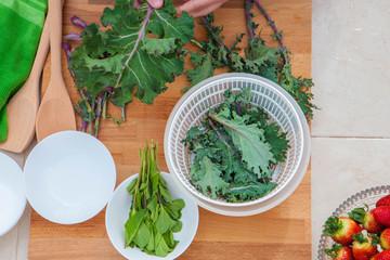 kale and herbs vegan organic vegetables