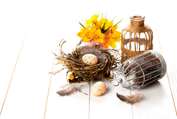 Easter eggs nest with birdcage and yellow Spring Crocus. on whit