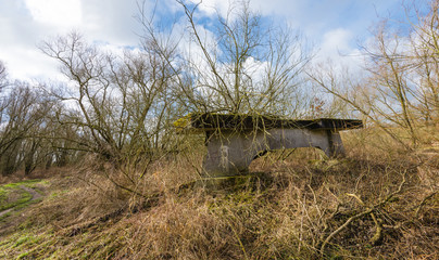 Overgrown concrete bridge pier in a natural landscape