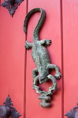 Aldabón de Iguana