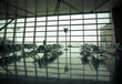 airport waiting area , seats and outside the window scene - 80713581