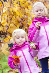 little girls with grape in autumnal vineyard