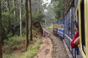 Nilgiri Mountain train to Ooty