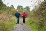 Fototapety Senior couple Nordic walking on the trail in nature