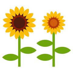 Sunflowers symbol