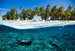 scuba diver island kapoposang indonesia bali lombok - 80719558