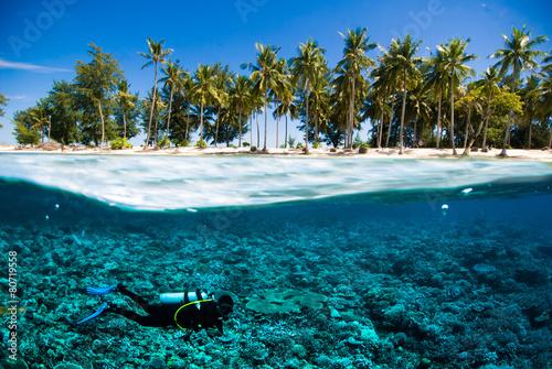 Fotobehang Duiken scuba diver island kapoposang indonesia bali lombok