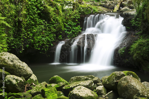 Tuinposter Watervallen Waterfall in the gold coast hinterlands on the NSW border.