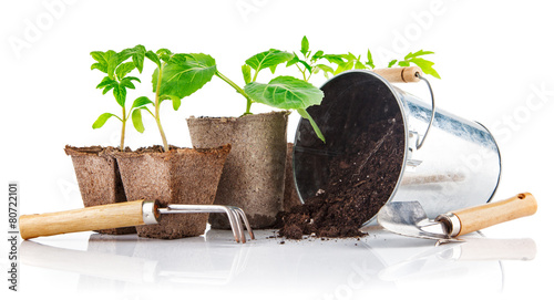 Papiers peints Vegetal Garden tools with seedlings vegetable. Isolated on white