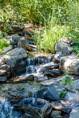 Stream Over Rocks