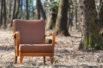 vintage armchair leather
